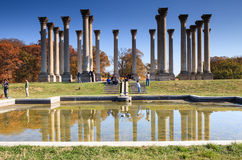 National Capitol Columns Washington DC Stock Images