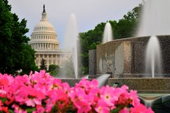 National Capitol in Washington DC Stock Photos