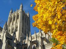 National Cathedral Autumn Royalty Free Stock Photography