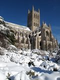 National Cathedral in February Royalty Free Stock Photo