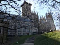National cathedral in Washington DC. Alway great for photos especially in the afternoon royalty free stock photography