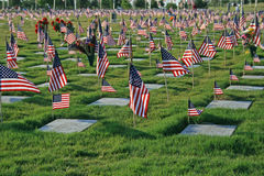 National cemetery. On Memorial Day royalty free stock images