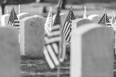 National Cemetery with a flag on Memorial day in Washington,Usa. Royalty Free Stock Photos