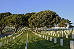 National Cemetery and Headstones. A well groomed National Cemetery honors former veterans of the Armed Services Stock Photo