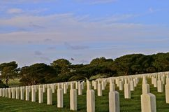 National Cemetery Headstones. The white headstones memorialize veterans who fought in foreign wars Royalty Free Stock Photo