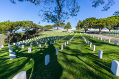 National Cemetery Stock Photography