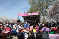 National Cherry Blossom festval Stock Photos