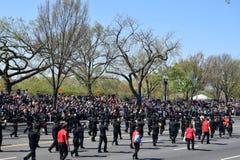 2016 National Cherry Blossom Parade in Washington DC Stock Photos
