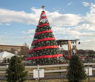 The National Christmas Tree 2014. The US National Christmas tree stands ready for the holiday season surrounded by the state and territorial trees royalty free stock photography