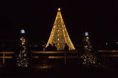 National Christmas Tree Royalty Free Stock Photo