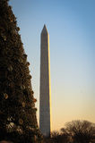 National Christmas tree and Washington monument Royalty Free Stock Photo