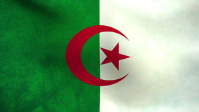 National flag of Algeria stock video