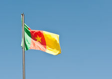 National flag of Cameroon Stock Image