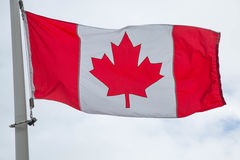 National flag Canada Stock Image