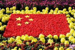 National flag of China. Was made up of red and yellow flowers,the  flower flag is center of plenty of chrysanthemums. Photo taken in the outside chrysanthemum Royalty Free Stock Photos