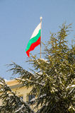 The national flag of the community building in Pomorie, Bulgaria, winter Royalty Free Stock Image