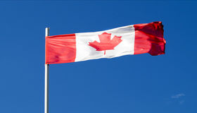The national flag of the country of Canada Royalty Free Stock Image