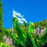 National flag of Greece on the flagpole against of bananas leaf and cypress tree and green mountain slopes. Mediterranean sea,. Somewhere in Greece. Europe stock photo