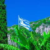 National flag of Greece on the flagpole against of bananas leaf and cypress tree and green mountain slopes. Mediterranean sea,. Somewhere in Greece. Europe royalty free stock image