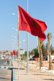 National flag of Morocco Royalty Free Stock Photos