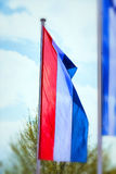 National flag of the Netherlands in portrait format Royalty Free Stock Images