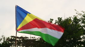 National flag of Seychelles. Islands stock footage