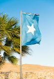 National flag of Somalia on flagpole. Waving National flag of Somalia on flagpole Stock Image