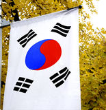 The national flag of South Korea. It has three parts: a white background, a red and blue Taeguk, which is a red and blue Taiji yin- and yang-symbol in the royalty free stock image