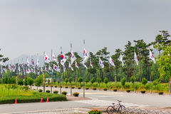 National Flag Street at National Cemetery, Daejeon, South Korea, 25 may 2016.  royalty free stock photography