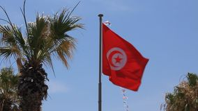 National flag of Tunisia stock video