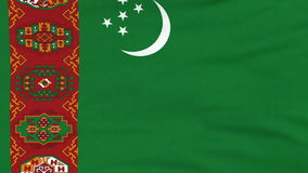 National flag of Turkmenistan flying on the wind stock video