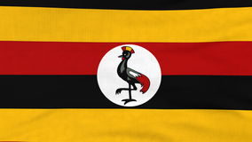 National flag of Uganda flying on the wind stock video