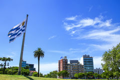 National flag of Uruguay flying in Tres Cruces district of Monte Stock Image