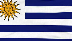 National flag of Uruguay flying on the wind. National flag of Uruguay flying and waving on the wind. Sate symbol of Uruguayan nation and government. Computer stock footage