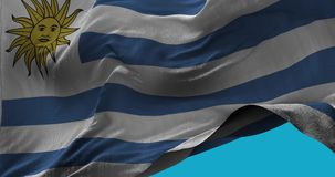 National Flag of  Uruguay waving in the wind slow motion. Seamless Loop Animation stock video