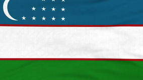 National flag of Uzbekistan flying on the wind. National flag of Uzbekistan flying and waving on the wind. Sate symbol of Uzbek nation and government. Computer stock footage