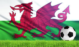 The National Flag of Wales Royalty Free Stock Image
