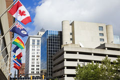 National flags in downtown of Grand Rapids Stock Photography