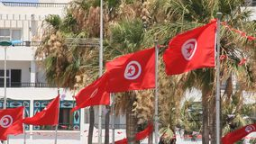 National flags of Tunisia stock video