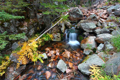 National Forest Creek Cascade Royalty Free Stock Photo