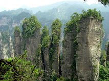 NATIONAL FOREST PARK. Zhangjiajie NATIONAL FOREST PARK IN CHINA Stock Photo