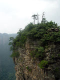 NATIONAL FOREST PARK. Zhangjiajie NATIONAL FOREST PARK IN CHINA Stock Photography