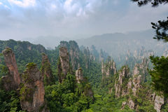 National Forest Park of Zhangjiajie. Famous mountain formations Stock Images
