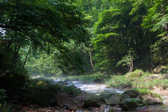 National Forest Park of Zhangjiajie. Riverview Royalty Free Stock Photography