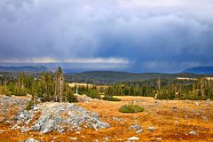 National Forest Storms Wyoming Royalty Free Stock Photo