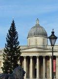 National Gallery και χριστουγεννιάτικο δέντρο, πλατεία Τραφάλγκαρ Στοκ εικόνα με δικαίωμα ελεύθερης χρήσης