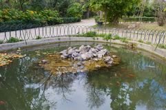 National Garden Pool with turtles Stock Photography