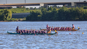 National Harbor Dragon Boat Regatta Royalty Free Stock Photography