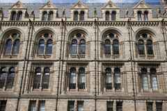 National History Museum, London Royalty Free Stock Photos