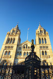 National History Museum in London Stock Image